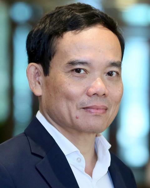 Trần Lưu Quang